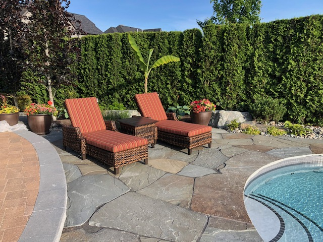 A cozy display of patio furniture, the Whibey Island Lounge Chair by a pool with green hedges in background.